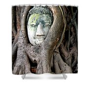 Head Of The Sandstone Buddha Shower Curtain