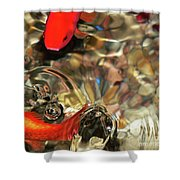 Head Or Tails Shower Curtain