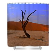 Head Stand Shower Curtain