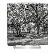 Heading South Bw Shower Curtain