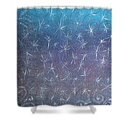 Wealth Magnet Shower Curtain