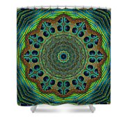 Healing Mandala 19 Shower Curtain