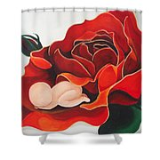 Healing Painting Baby Sleeping In A Rose Shower Curtain