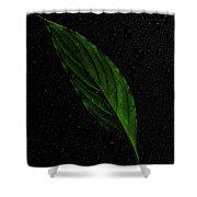 Healthy Green Shower Curtain