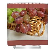 Healthy Snack Shower Curtain