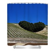 Heart Hill Paso Robles Shower Curtain by Jason O Watson