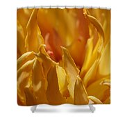 Heart Of A Peony 2 Shower Curtain