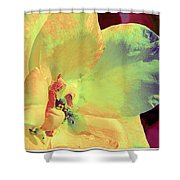 Heart Of A Rose Shower Curtain