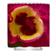 Heart Of An Orchid Shower Curtain