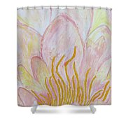 Heart Of Aqualily Shower Curtain