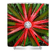 Heart Of Fire Panoramic Shower Curtain