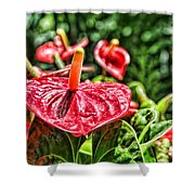 Heart Of Hawaii By Diana Sainz Shower Curtain