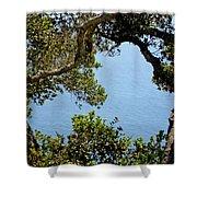 Heart Of Nepenthe - Big Sur Shower Curtain