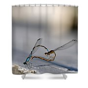 Heart Of The Damselfly Shower Curtain