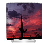 Heart Of The Sunset Shower Curtain