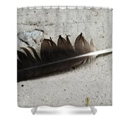 Heart Rock And Feather Shower Curtain