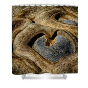 Heart Rock Shower Curtain