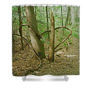 Heart Shaped Roots Shower Curtain