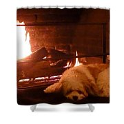 Hearth Warming Dog Shower Curtain