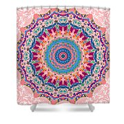 Hearts And Flowers No. 1 Shower Curtain