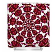Hearts And Orchids Kaleidoscope Shower Curtain