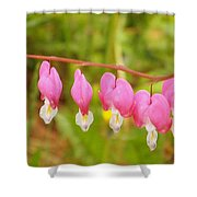 Hearts On The Line Shower Curtain