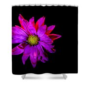 Heat Of The Moment Shower Curtain