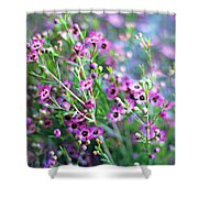 Heather Shower Curtain