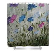 Heaven And Earth B Shower Curtain