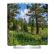 Heaven In The High Country Shower Curtain