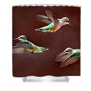 Heavenly Birds Shower Curtain