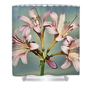 Heavenly Lilies Shower Curtain