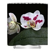 Heavenly Tranquility Shower Curtain