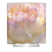 Heaven's Pink Rose Flower Shower Curtain