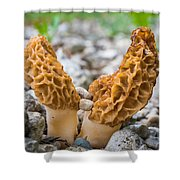 Heavy Lifting Morels Shower Curtain