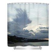 Hedgehog Cloud Shower Curtain