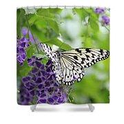 Hello Beauty Shower Curtain