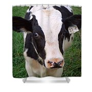 Hello My Name Is Cow Shower Curtain