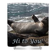 Hello To You Sea Lion Shower Curtain