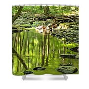 Hells Run Reflections Shower Curtain by Adam Jewell