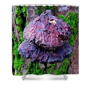 Hemlock Reishi Shower Curtain