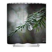 Hemlock Tears Shower Curtain