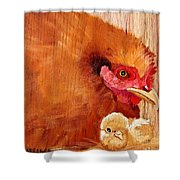 Hen With Chick On Wood Shower Curtain
