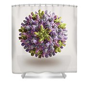 Hepatitis B Virus Shower Curtain