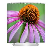 Her Beauty Shower Curtain