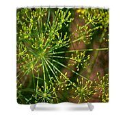 Herbal Abstract Shower Curtain