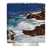 Hercules On The Argonauts Ship Shower Curtain