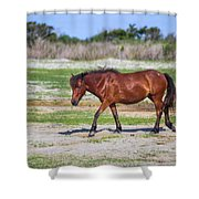 Herd 23 Shower Curtain
