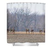 Herd Mentality Shower Curtain