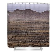 Herd Of Antelope   #8573 Shower Curtain